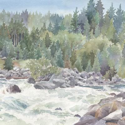 wild-rapids