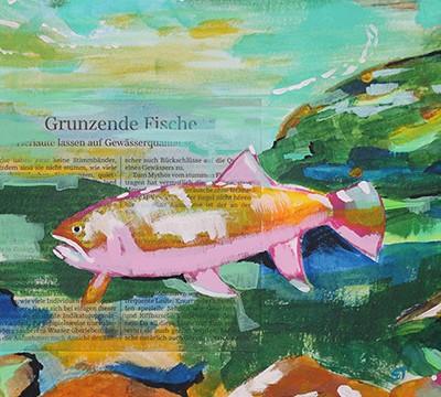 grunting-fish