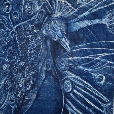 marian-sims-harris-peacock-glory-monotype-print