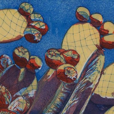 marian-sims-harris-sonoma-cactus-etching-3-plate-4-colori-copy