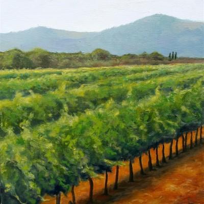 sansonnet-vines-2