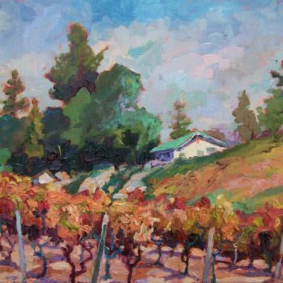 bouchaine-vineyard